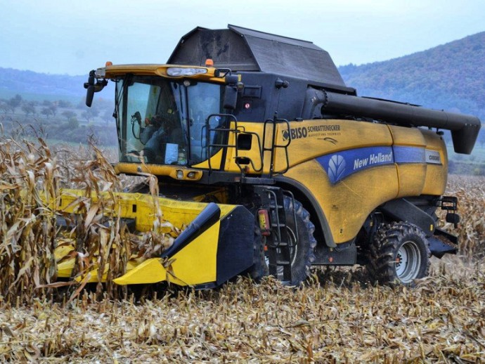 Corn harvest with BISO CornPower